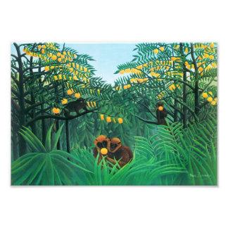 Henri Rousseau The Tropics Print Photo Print