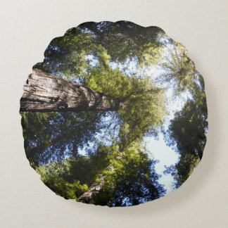 Henry Cowell Redwoods 2 Round Cushion