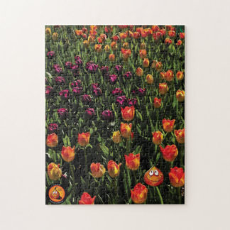 """""""Henry Tulip Bulb's Dare to be Different"""" Puzzle"""