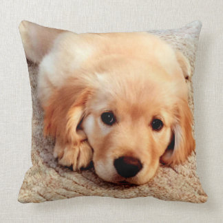 Henry's World Today Golden Retriever Pillow