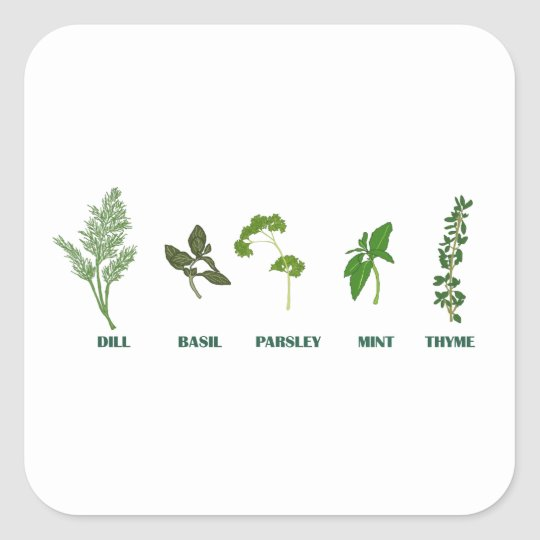 Herb Collection Square Sticker