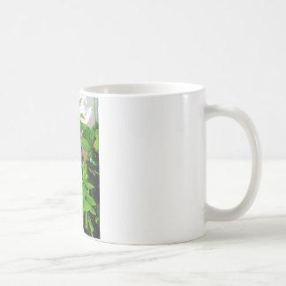 Herb collection Thai Basil photograph art Coffee Mug