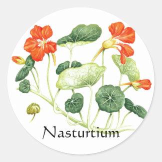 Herb Garden Series - Nasturtium Round Sticker