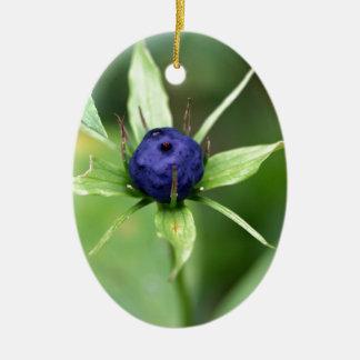 Herb paris (Paris quadrifolia) Ceramic Oval Decoration