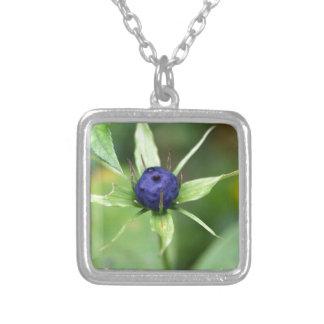 Herb paris (Paris quadrifolia) Silver Plated Necklace