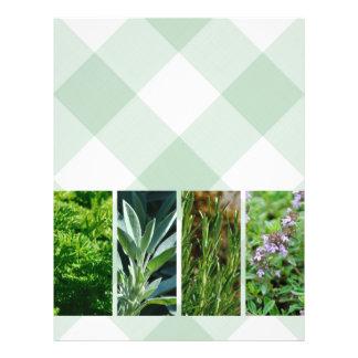 Herb plants blank flyer