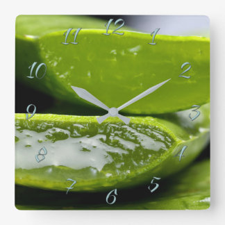 Herbalist's shop square wall clock