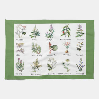 Herbs and Spices full color illustrations Tea Towel
