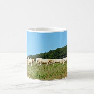 Herd of beef cattle basic white mug