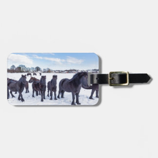 Herd of black frisian horses in winter snow luggage tag