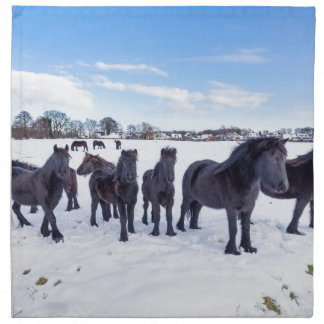 Herd of black frisian horses in winter snow napkin