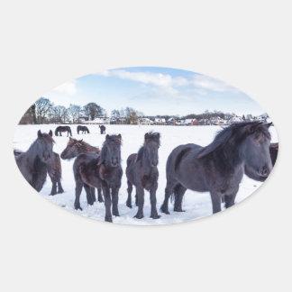 Herd of black frisian horses in winter snow oval sticker