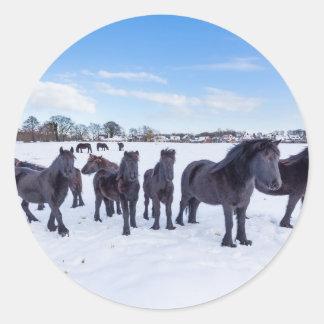 Herd of black frisian horses in winter snow round sticker