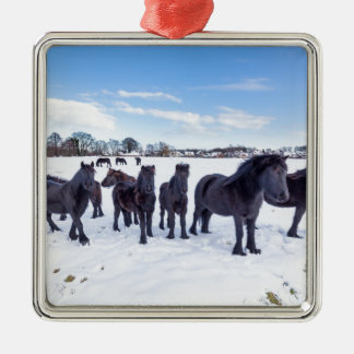 Herd of black frisian horses in winter snow Silver-Colored square decoration
