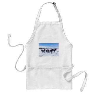 Herd of black frisian horses in winter snow standard apron