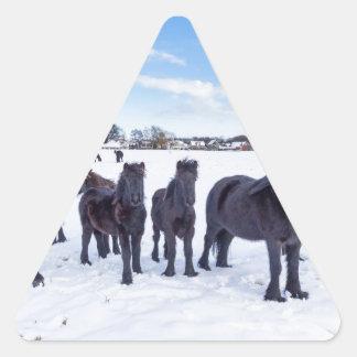 Herd of black frisian horses in winter snow triangle sticker