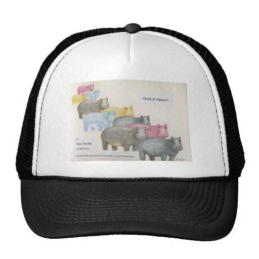 Herd of Hippos? Trucker Hat