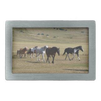 Herd of Horses Belt Buckles