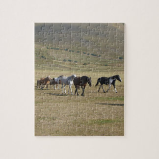 Herd of Horses Jigsaw Puzzle