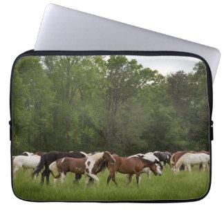 Herd of horses, Tennessee Laptop Sleeve