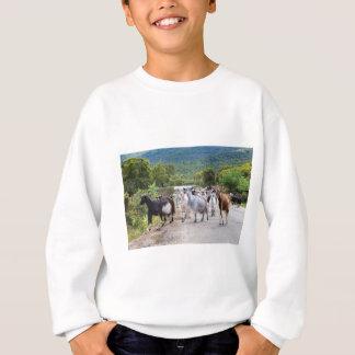 Herd of mountain goats walking on road sweatshirt
