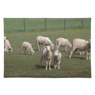 Herd of sheep placemat
