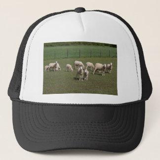 Herd of sheep trucker hat