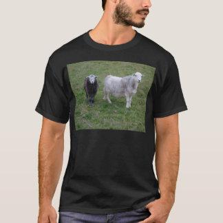 Herdwick Ewe and Lamb T-shirt