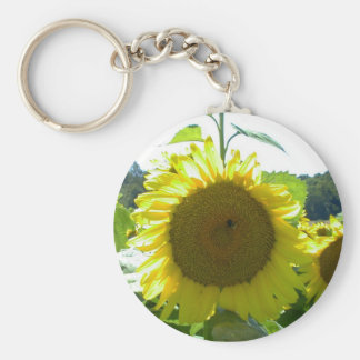 Here Comes the Sun--Keychain Key Ring