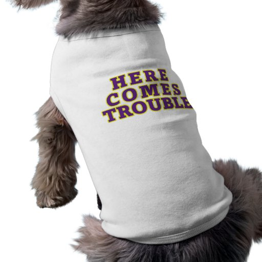 Here comes trouble pet tee