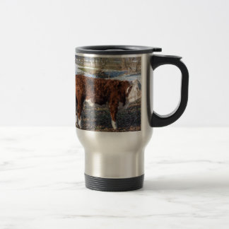 Hereford calves in winter meadow with snow travel mug