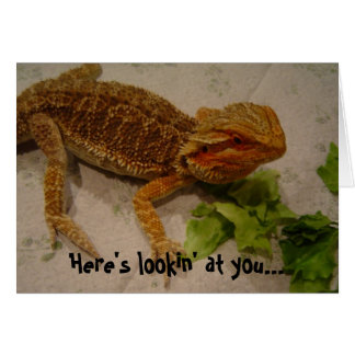 Here's Lookin' at You, Bearded Dragon Birthday Cards