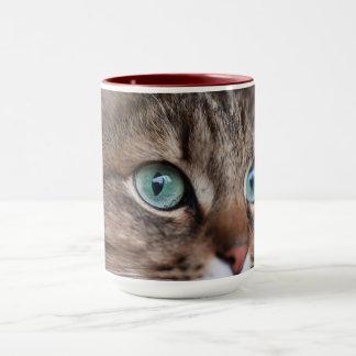 Here's Looking at You Kit Mug