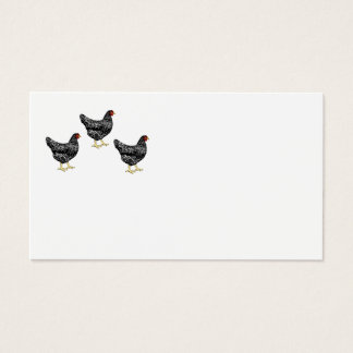 Heritage Breed Chickens - Laying Hens Business Card