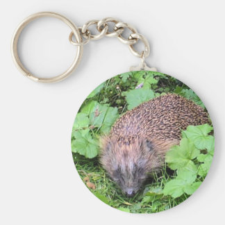 Herman Hedgehog Basic Round Button Key Ring