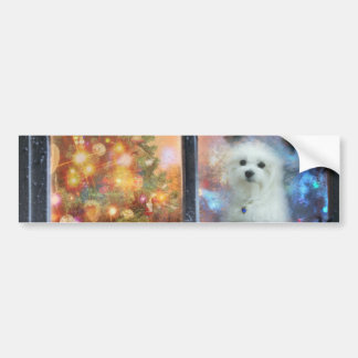 Hermes the Maltese Bumper Sticker