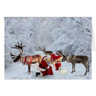 Hermes the Maltese Christmas Greeting Card