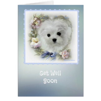 Hermes the Maltese 'Get Well' Greeting Card