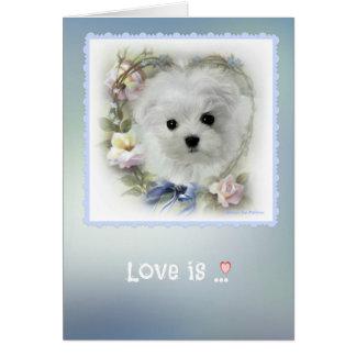 Hermes the Maltese 'Love Is' Greeting Card