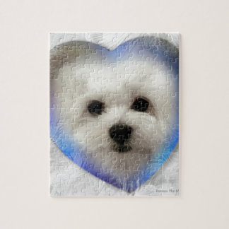 Hermes the Maltese Puzzle