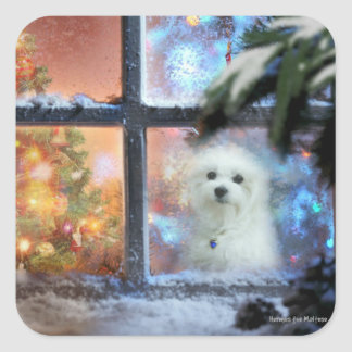Hermes the Maltese Square Sticker