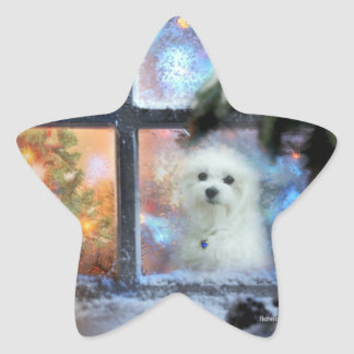 Hermes the Maltese Star Sticker