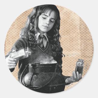 Hermione 7 stickers
