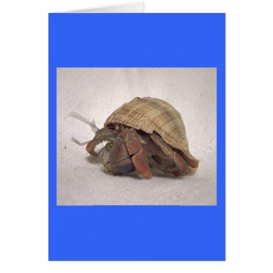 Hermit Crab #8 Card