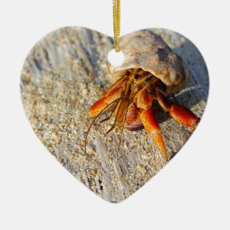 Hermit Crab Ceramic Ornament
