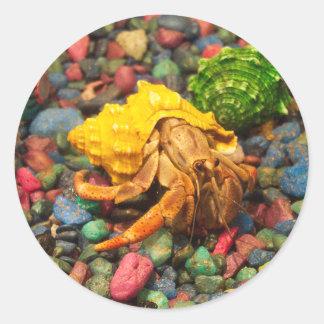 Hermit Crab Stickers 01