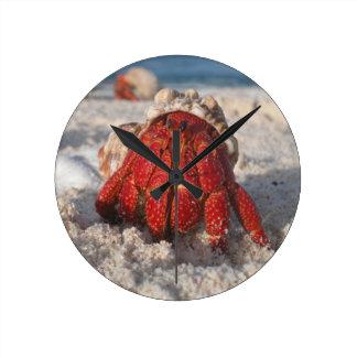 Hermit Crab Wallclocks