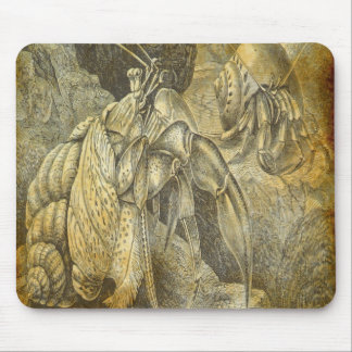 Hermit crabs mouse pad