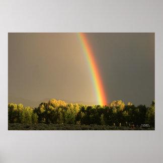 Hermitage Rainbow Poster