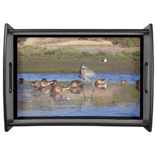 Heron Bird Ducks Wildlife Photography Serving Tray